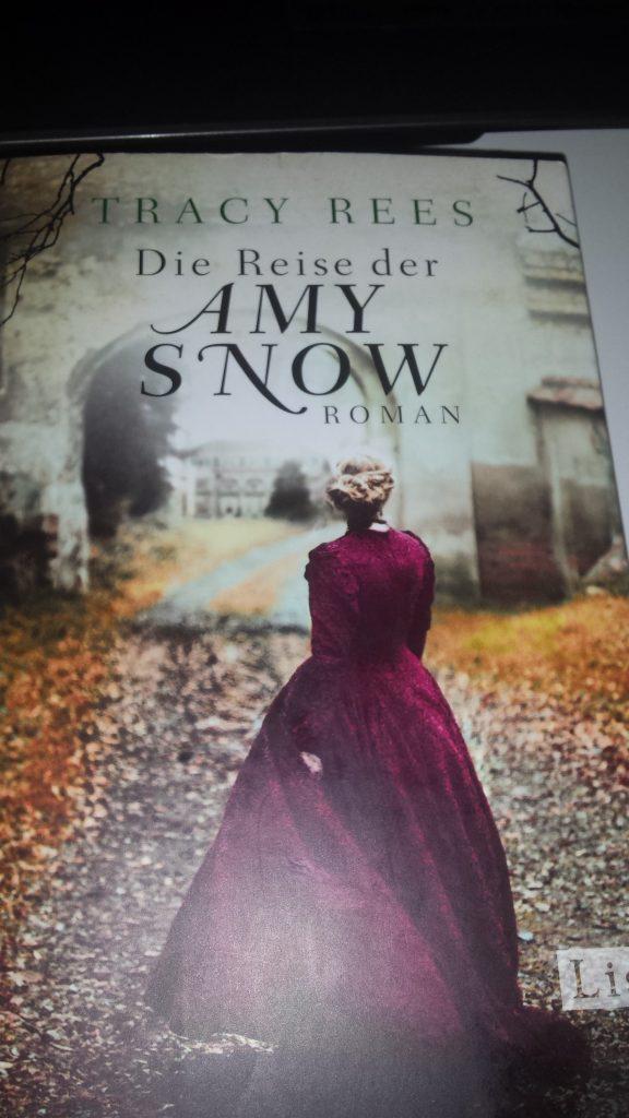 die reise der amy snow von tracy Rees auf www.nixzulesen.de